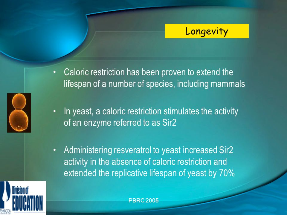 PBRC 2005 Caloric restriction has been proven to extend the lifespan of a number of species, including mammals In yeast, a caloric restriction stimulates the activity of an enzyme referred to as Sir2 Administering resveratrol to yeast increased Sir2 activity in the absence of caloric restriction and extended the replicative lifespan of yeast by 70% Longevity