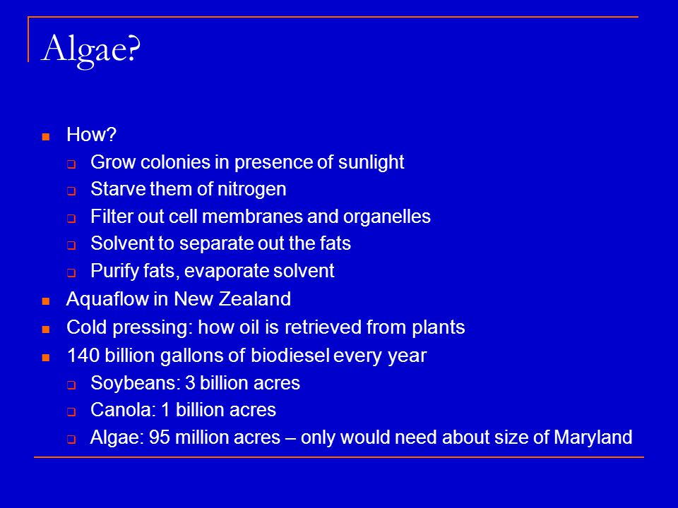Algae? How?  Grow colonies in presence of sunlight  Starve them of nitrogen  Filter out cell membranes and organelles  Solvent to separate out the