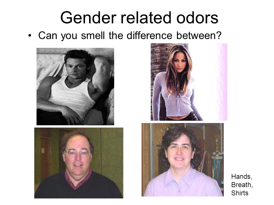 Gender related odors Can you smell the difference between Hands, Breath, Shirts