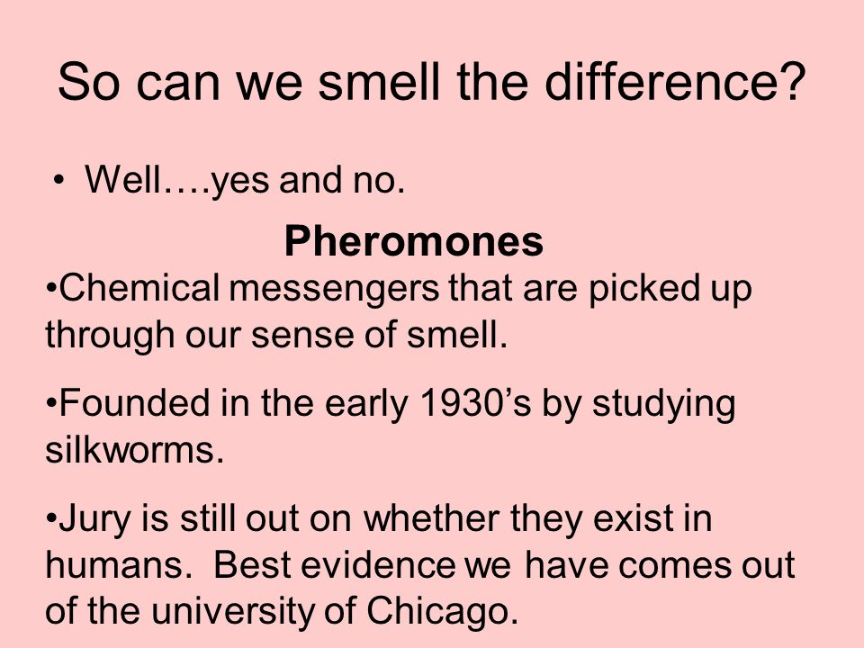 So can we smell the difference. Well….yes and no.