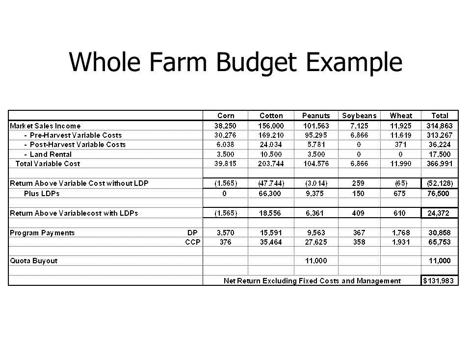 Whole Farm Budget Example