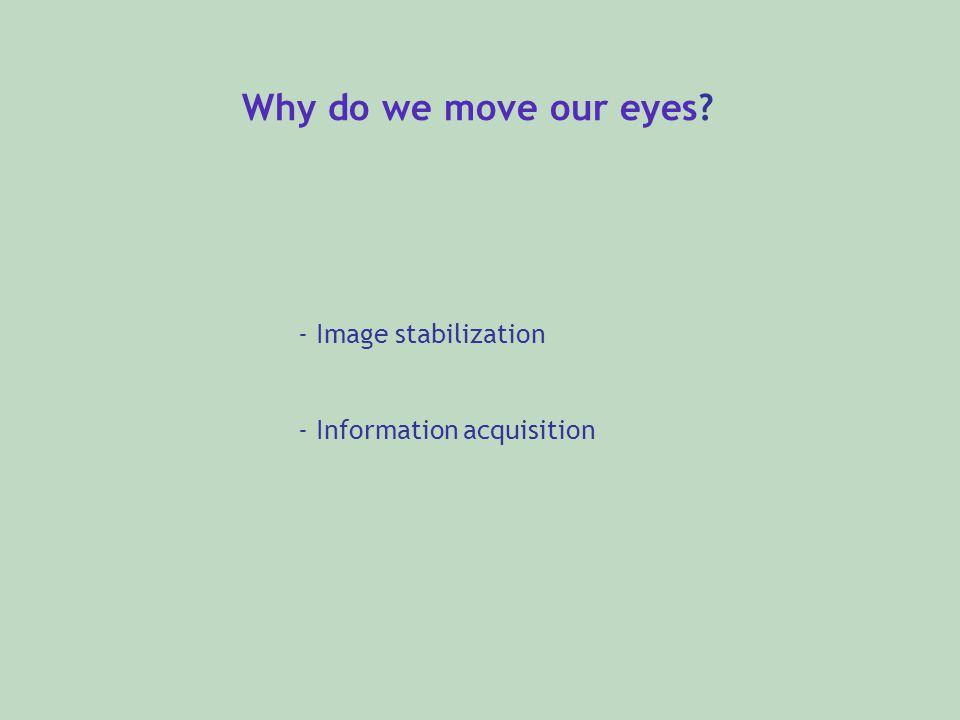 Why do we move our eyes? - Image stabilization - Information acquisition