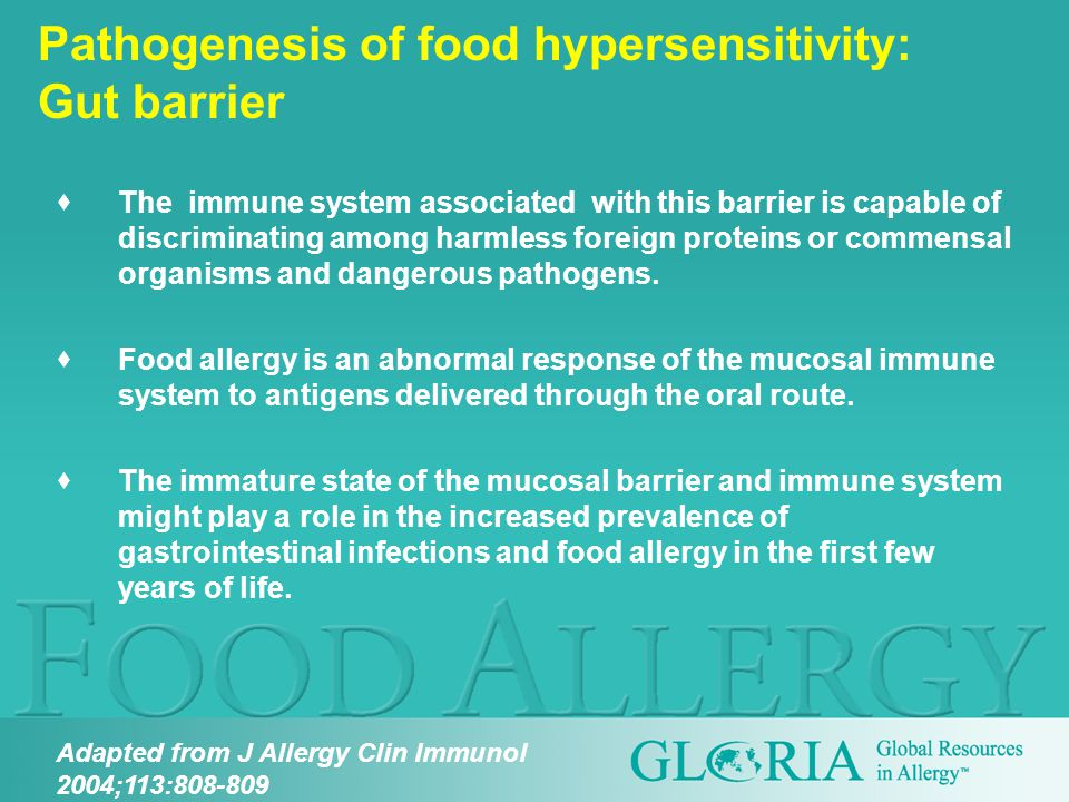 Pathogenesis of food hypersensitivity: Gut barrier  The immune system associated with this barrier is capable of discriminating among harmless foreign proteins or commensal organisms and dangerous pathogens.