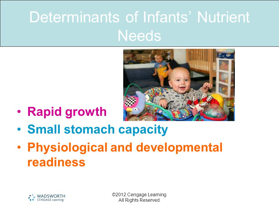 ©2012 Cengage Learning. All Rights Reserved. Determinants of Infants' Nutrient Needs Rapid growth Small stomach capacity Physiological and development