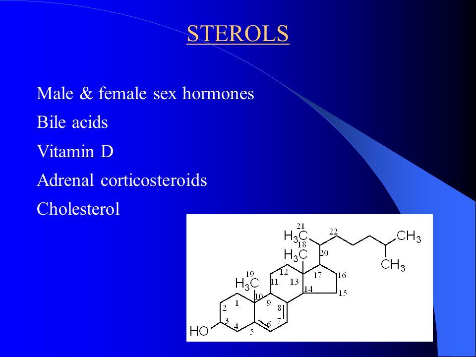 STEROLS Male & female sex hormones Bile acids Vitamin D Adrenal corticosteroids Cholesterol