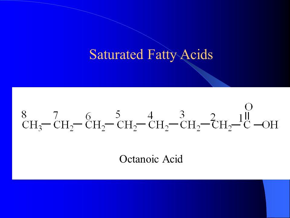 Saturated Fatty Acids Octanoic Acid