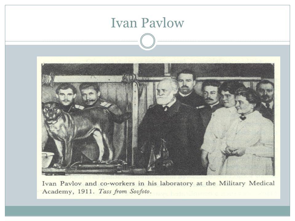 Ivan Pavlow