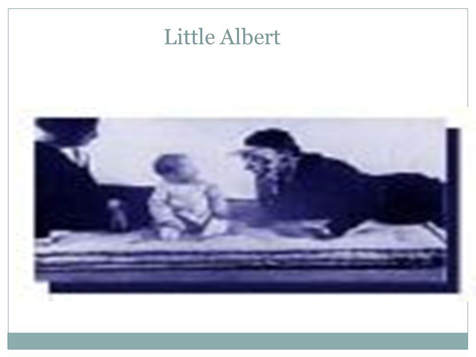 Conditioning Little Albert