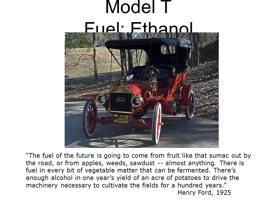 Model T Fuel: Ethanol The fuel of the future is going to come from fruit like that sumac out by the road, or from apples, weeds, sawdust -- almost anything.