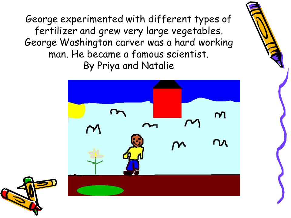 George experimented with different types of fertilizer and grew very large vegetables. George Washington carver was a hard working man. He became a fa