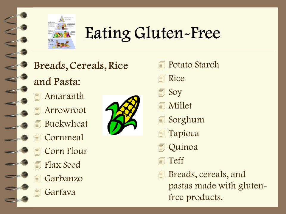 Eating Gluten-Free Breads, Cereals, Rice and Pasta: 4 Amaranth 4 Arrowroot 4 Buckwheat 4 Cornmeal 4 Corn Flour 4 Flax Seed 4 Garbanzo 4 Garfava 4 Potato Starch 4 Rice 4 Soy 4 Millet 4 Sorghum 4 Tapioca 4 Quinoa 4 Teff 4 Breads, cereals, and pastas made with gluten- free products.