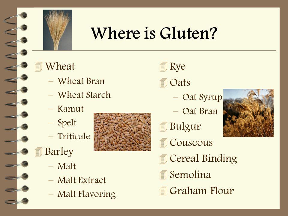 Where is Gluten? 4 Wheat –Wheat Bran –Wheat Starch –Kamut –Spelt –Triticale 4 Barley –Malt –Malt Extract –Malt Flavoring 4 Rye 4 Oats –Oat Syrup –Oat