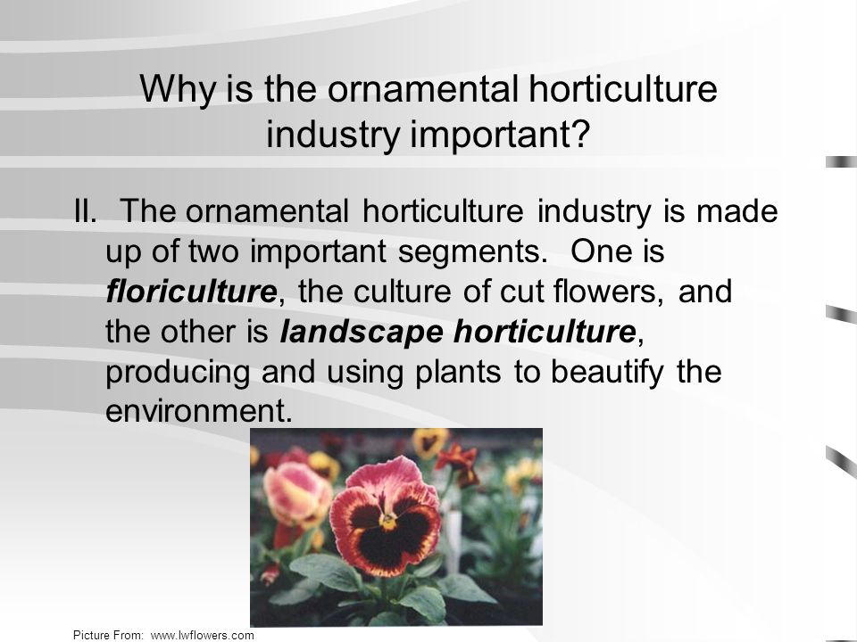 A.Floriculture is an international, multibillion dollar industry.