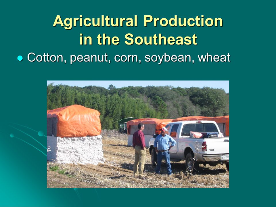 Agricultural Production in the Southeast Cotton, peanut, corn, soybean, wheat Cotton, peanut, corn, soybean, wheat