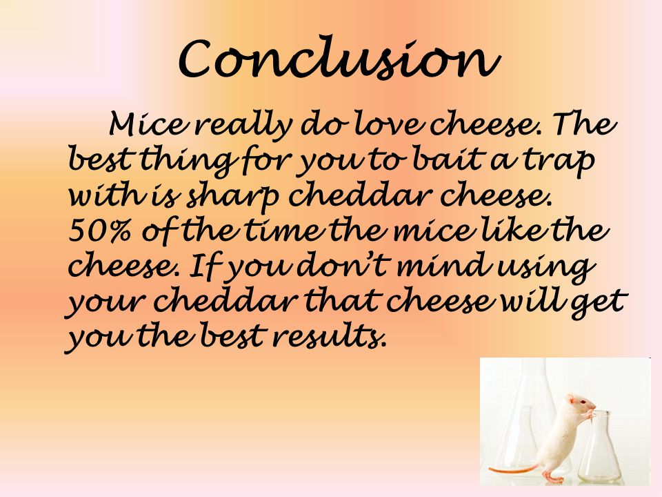 Conclusion Mice really do love cheese. The best thing for you to bait a trap with is sharp cheddar cheese. 50% of the time the mice like the cheese. I