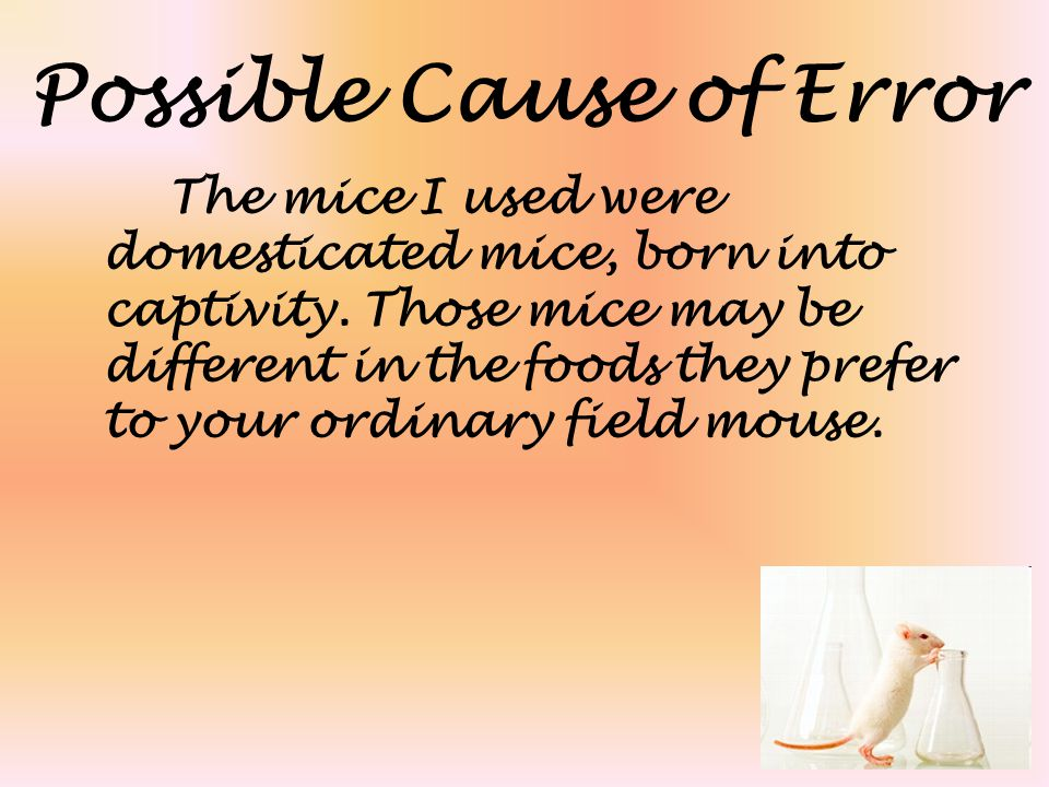Possible Cause of Error The mice I used were domesticated mice, born into captivity. Those mice may be different in the foods they prefer to your ordi