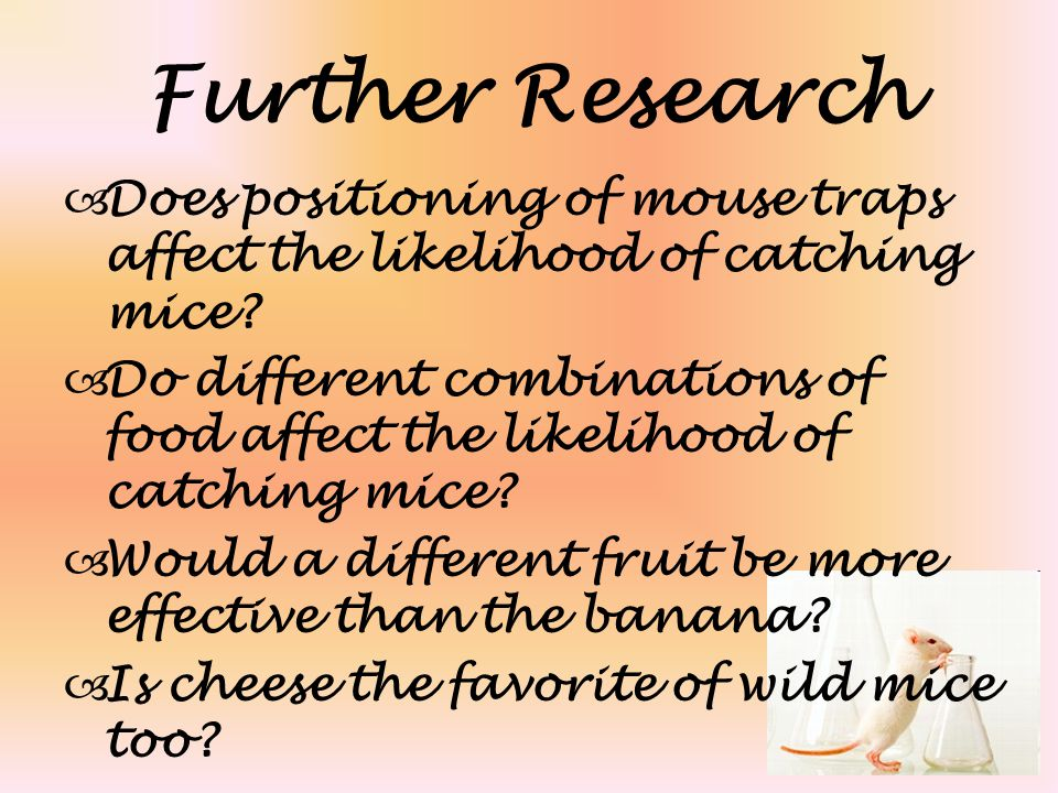 Further Research  Does positioning of mouse traps affect the likelihood of catching mice?  Do different combinations of food affect the likelihood o