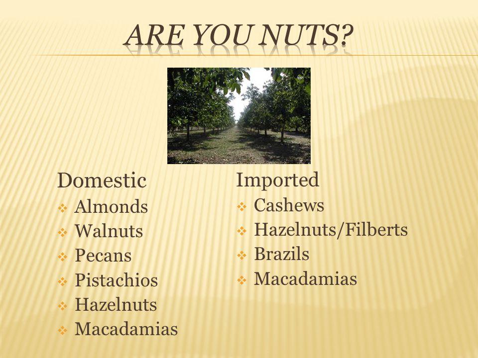 Domestic  Almonds  Walnuts  Pecans  Pistachios  Hazelnuts  Macadamias Imported  Cashews  Hazelnuts/Filberts  Brazils  Macadamias
