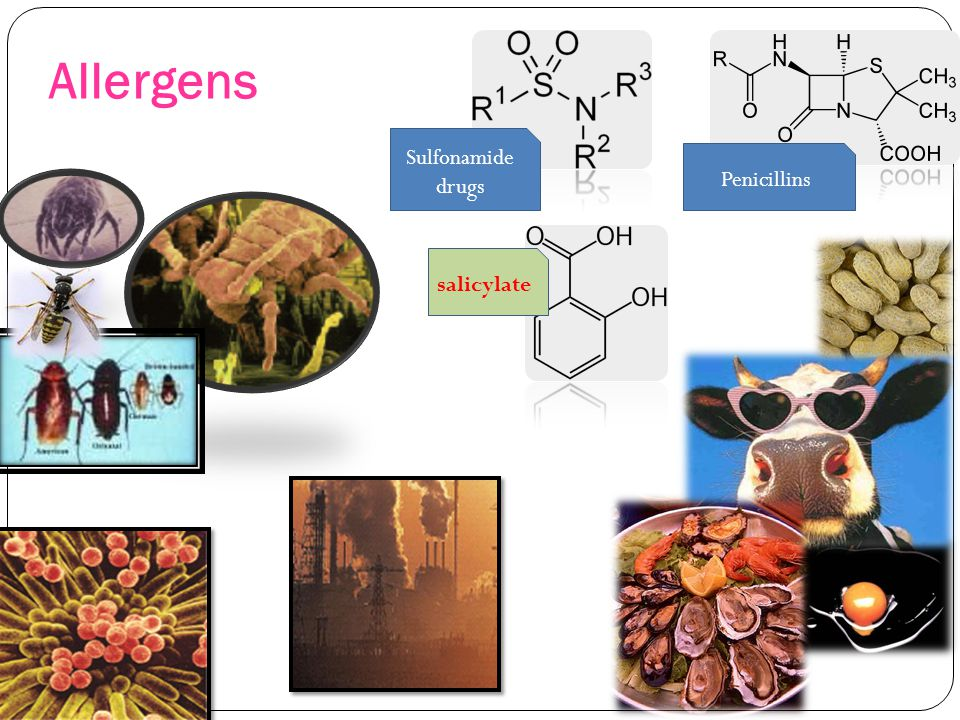 Allergens Sulfonamide drugs Penicillins salicylate
