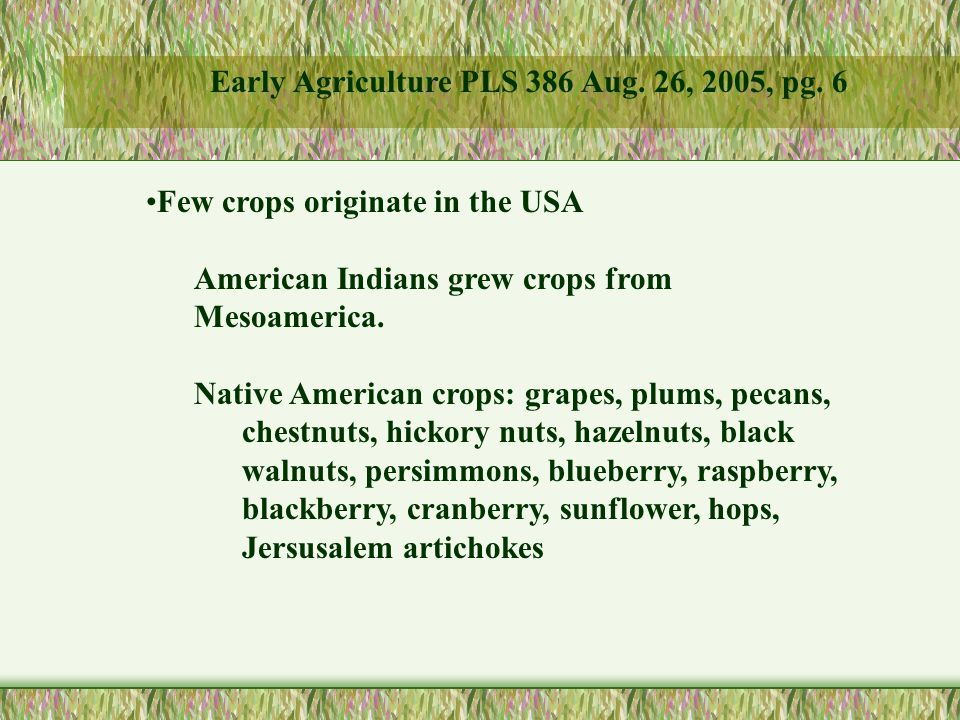 Few crops originate in the USA American Indians grew crops from Mesoamerica.