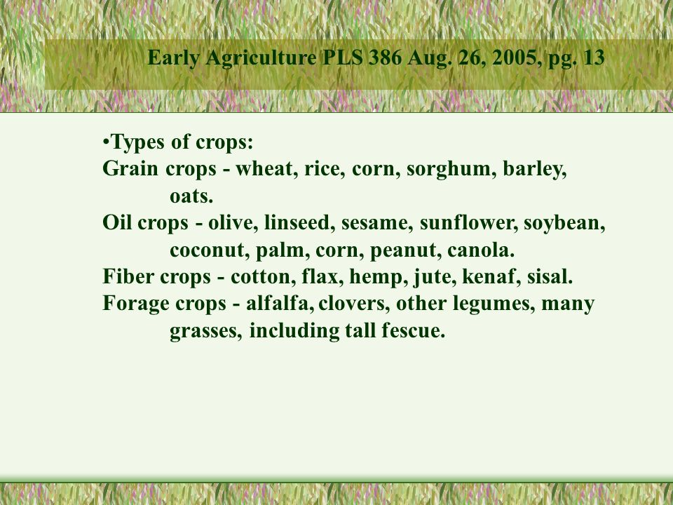 Types of crops: Grain crops - wheat, rice, corn, sorghum, barley, oats.