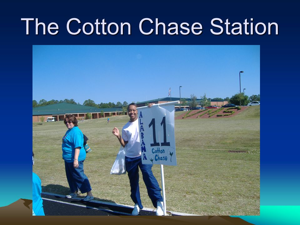 The Cotton Chase Station