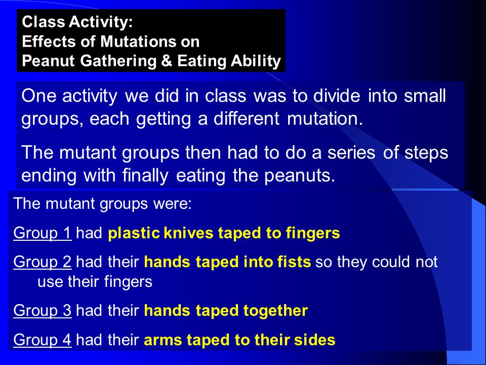 Class Activity: Effects of Mutations on Peanut Gathering & Eating Ability One activity we did in class was to divide into small groups, each getting a different mutation.