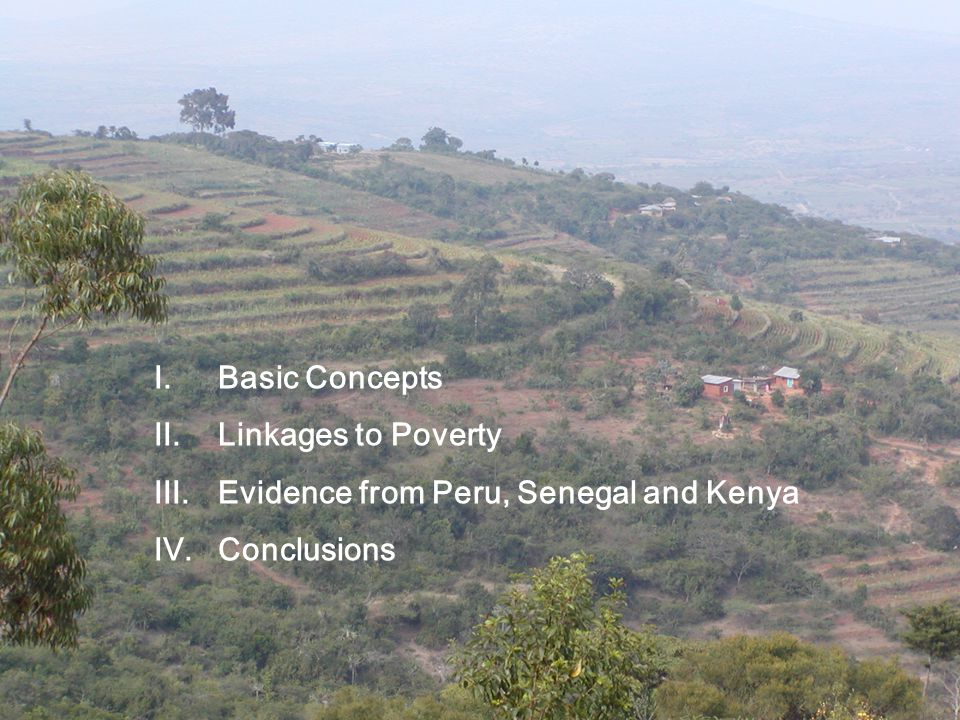 I.Basic Concepts II.Linkages to Poverty III.Evidence from Peru, Senegal and Kenya IV.Conclusions