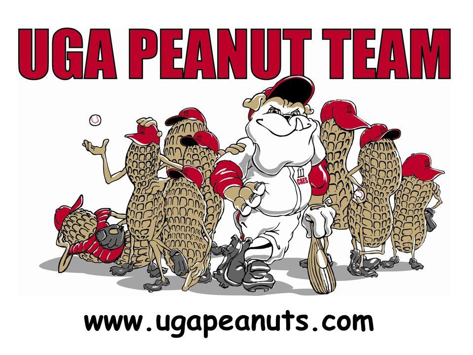 www.ugapeanuts.com
