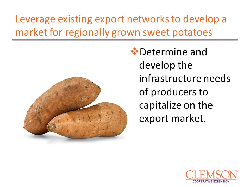 Leverage existing export networks to develop a market for regionally grown sweet potatoes  Determine and develop the infrastructure needs of producers to capitalize on the export market.