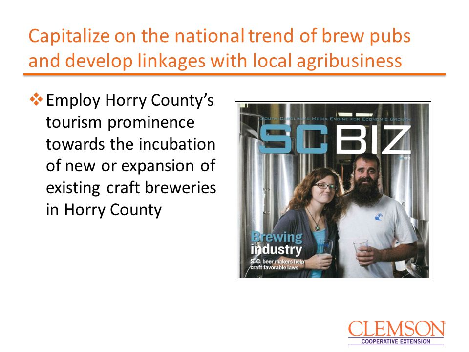 Capitalize on the national trend of brew pubs and develop linkages with local agribusiness  Employ Horry County's tourism prominence towards the incubation of new or expansion of existing craft breweries in Horry County