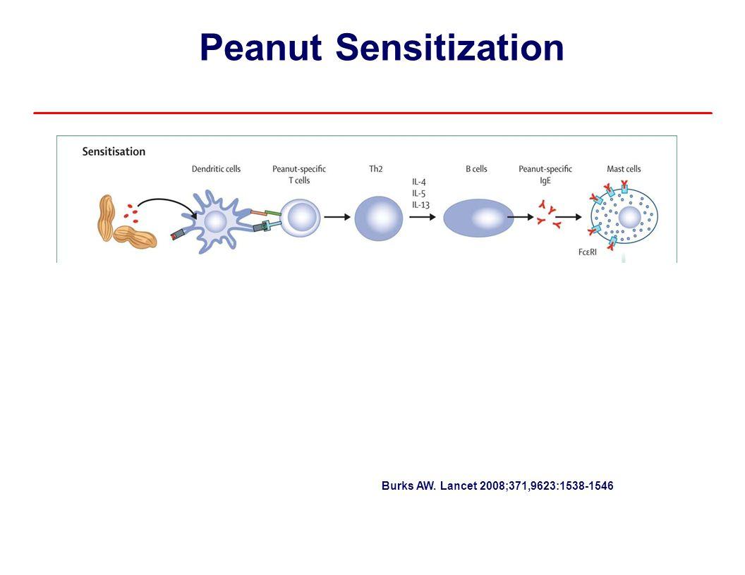 Peanut OIT Allergen-Specific T cells Basophil markers - %CD63 – Significant change over first few months of OIT Peanut-specific CD4+CD25+Foxp3+ – T-Regulatory cells T cells increased at 12 months decreased thereafter Peanut-specific cytokines – Decreased – pro-allergic cytokines - IL-4, IL-5, IL-13 – Increased – regulatory cytokines - IL-10, TGF-ß Breslin et al.