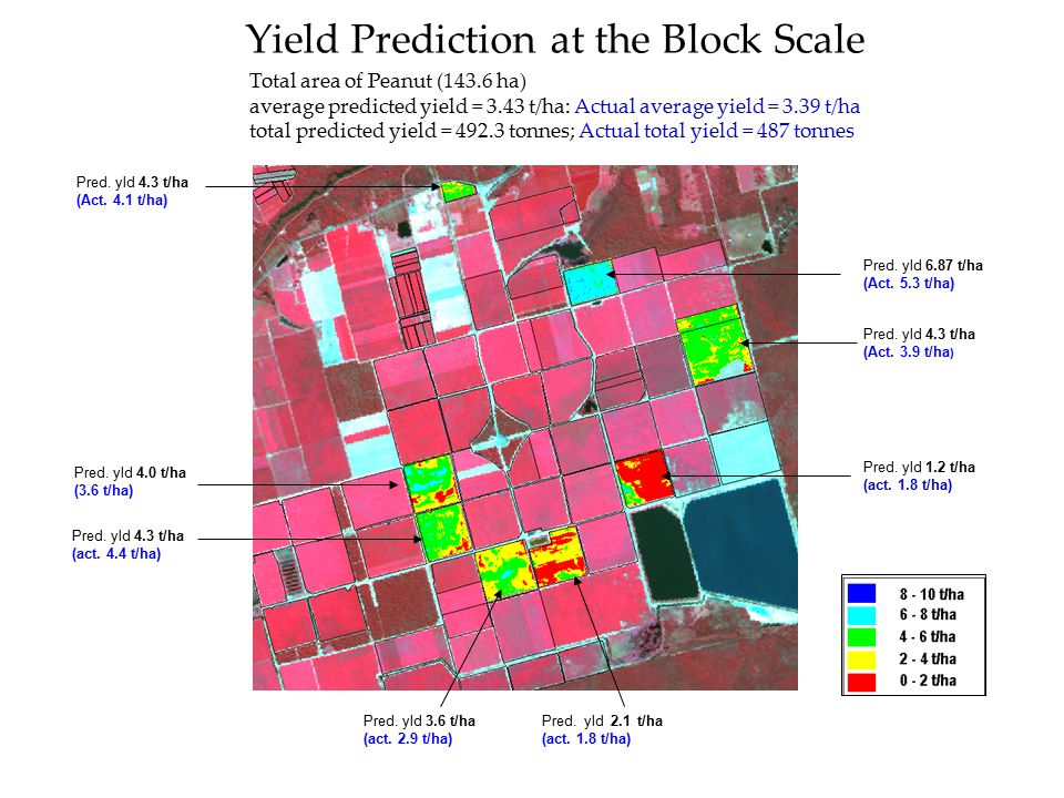 Yield Prediction at the Block Scale Pred. yld 2.1 t/ha (act. 1.8 t/ha) Pred. yld 3.6 t/ha (act. 2.9 t/ha) Pred. yld 1.2 t/ha (act. 1.8 t/ha) Pred. yld