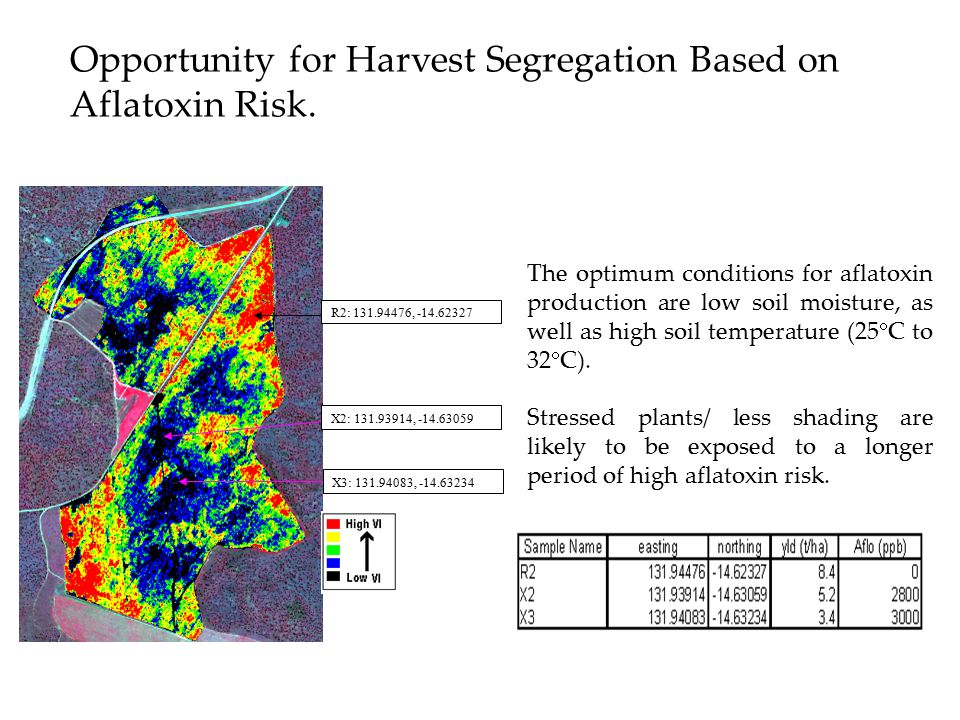X3: 131.94083, -14.63234 X2: 131.93914, -14.63059 R2: 131.94476, -14.62327 Opportunity for Harvest Segregation Based on Aflatoxin Risk. The optimum co