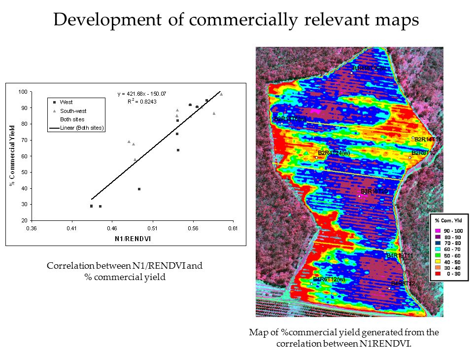 Development of commercially relevant maps Map of %commercial yield generated from the correlation between N1RENDVI. Correlation between N1/RENDVI and