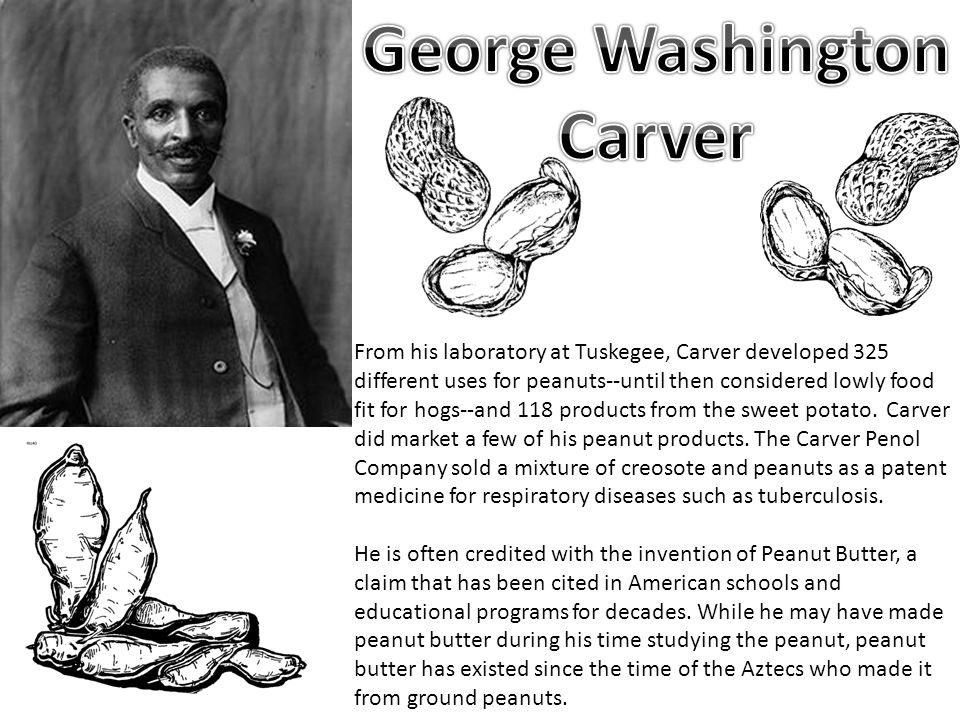 From his laboratory at Tuskegee, Carver developed 325 different uses for peanuts--until then considered lowly food fit for hogs--and 118 products from