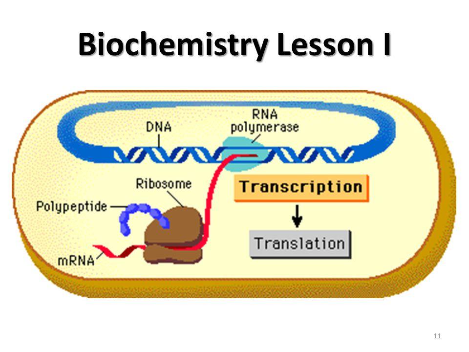 Biochemistry Lesson I 11