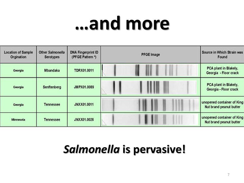 2.Prevent spread of Salmonella Salmonella controls 2.