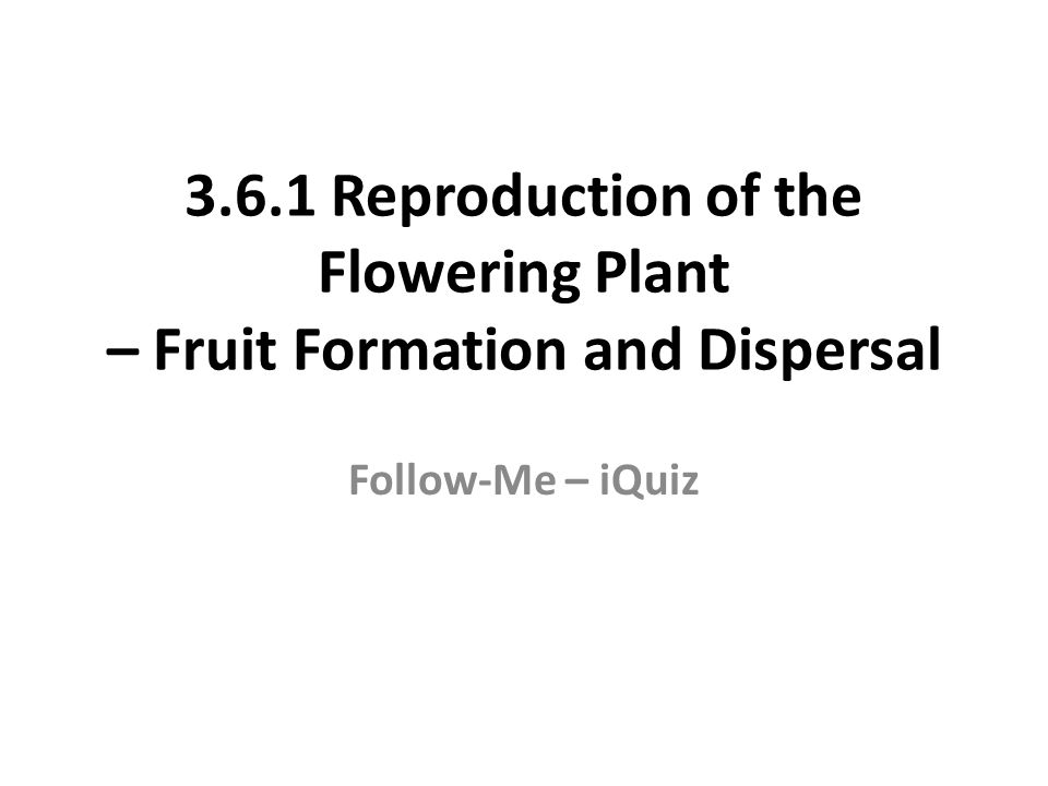 3.6.1 Reproduction of the Flowering Plant – Fruit Formation and Dispersal Follow-Me – iQuiz