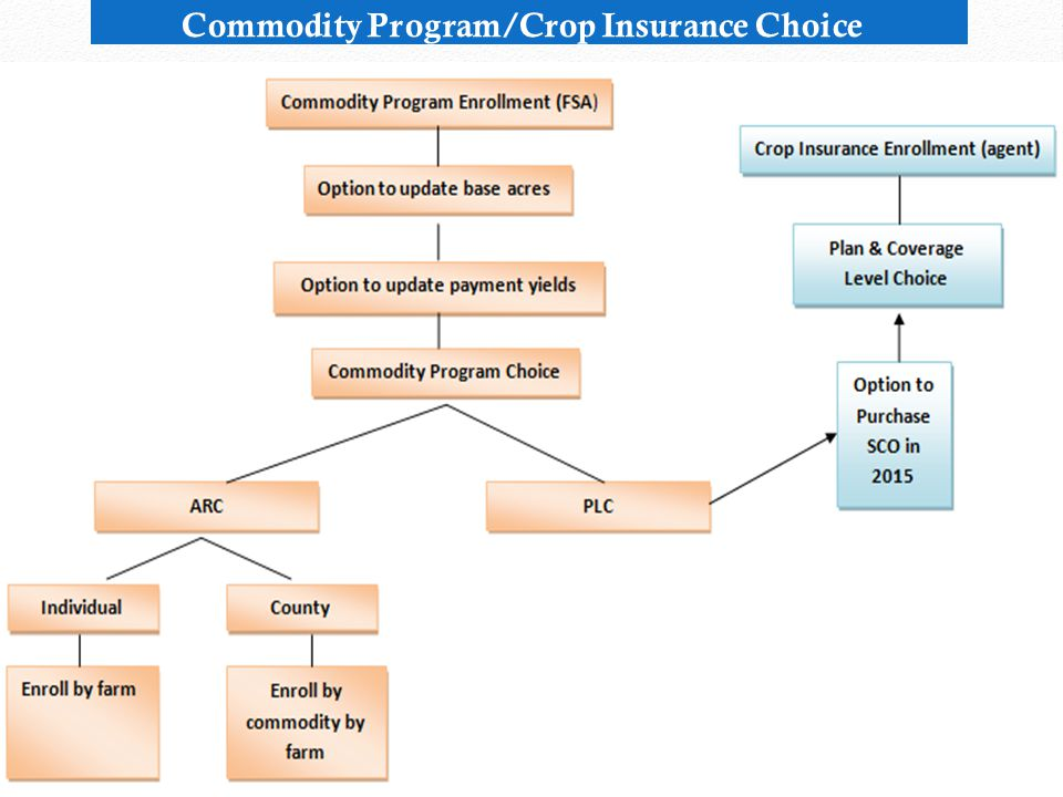 Commodity Program/Crop Insurance Choice