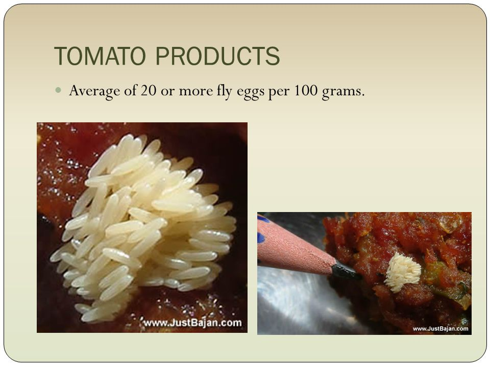 TOMATO PRODUCTS Average of 20 or more fly eggs per 100 grams.