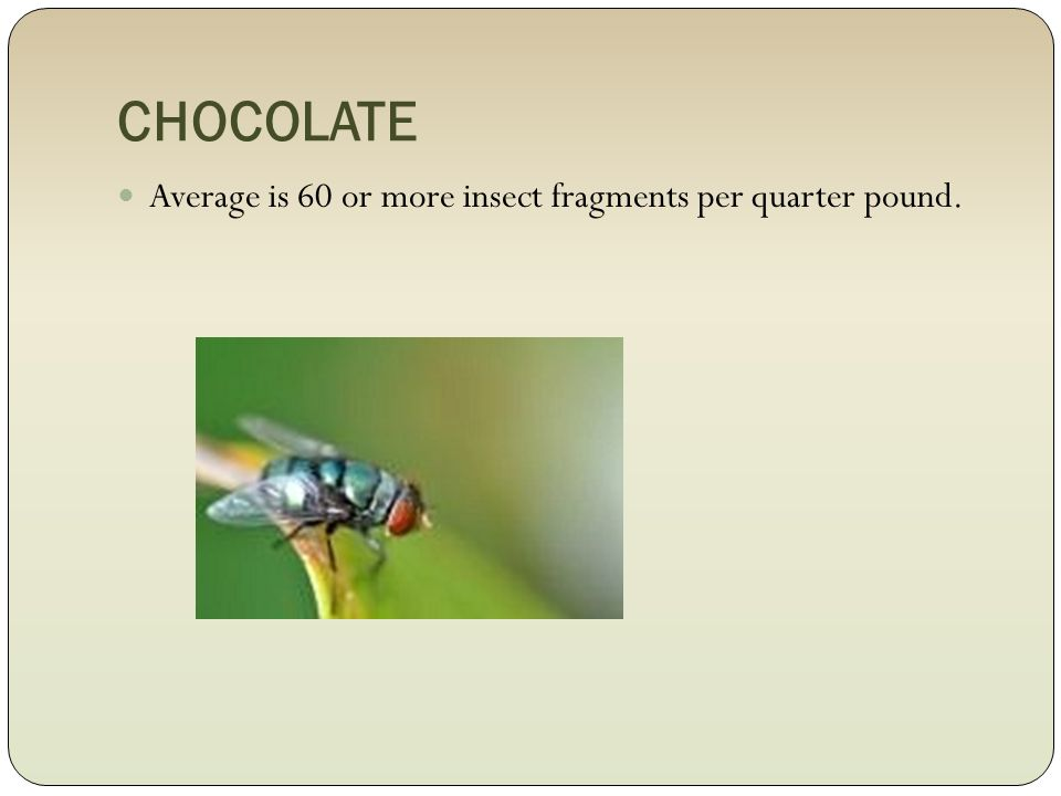 CHOCOLATE Average is 60 or more insect fragments per quarter pound.