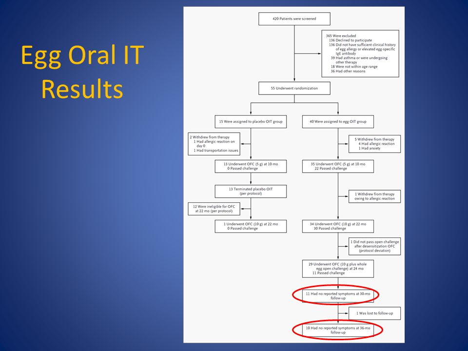 Egg Oral IT Results