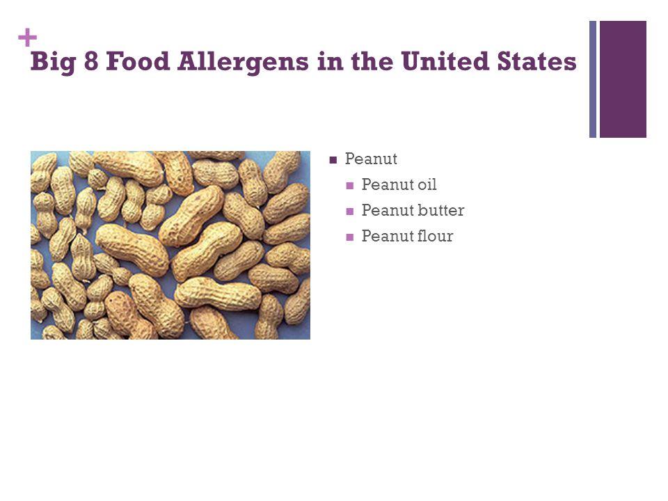 + Big 8 Food Allergens in the United States Peanut Peanut oil Peanut butter Peanut flour