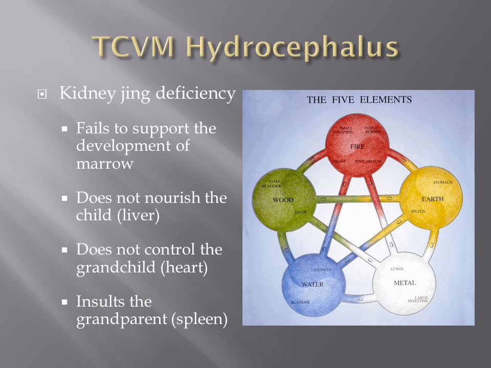  Kidney jing deficiency  Fails to support the development of marrow  Does not nourish the child (liver)  Does not control the grandchild (heart) 