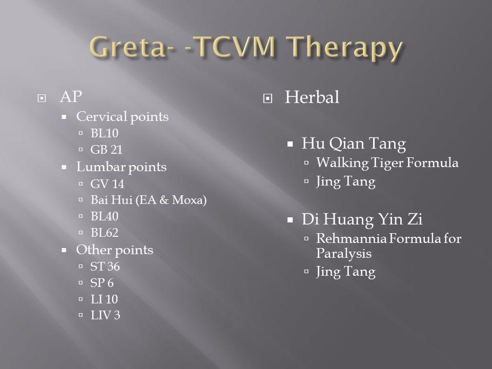  AP  Cervical points  BL10  GB 21  Lumbar points  GV 14  Bai Hui (EA & Moxa)  BL40  BL62  Other points  ST 36  SP 6  LI 10  LIV 3  Herb