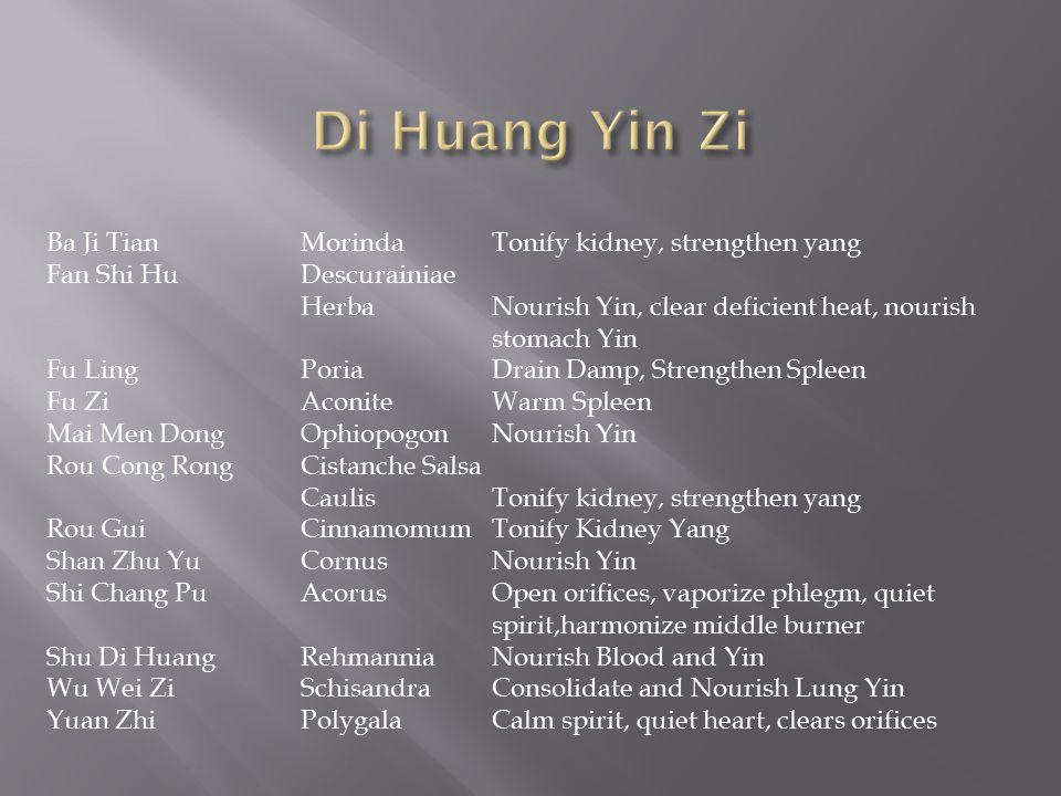 Ba Ji TianMorindaTonify kidney, strengthen yang Fan Shi HuDescurainiae HerbaNourish Yin, clear deficient heat, nourish stomach Yin Fu LingPoriaDrain D