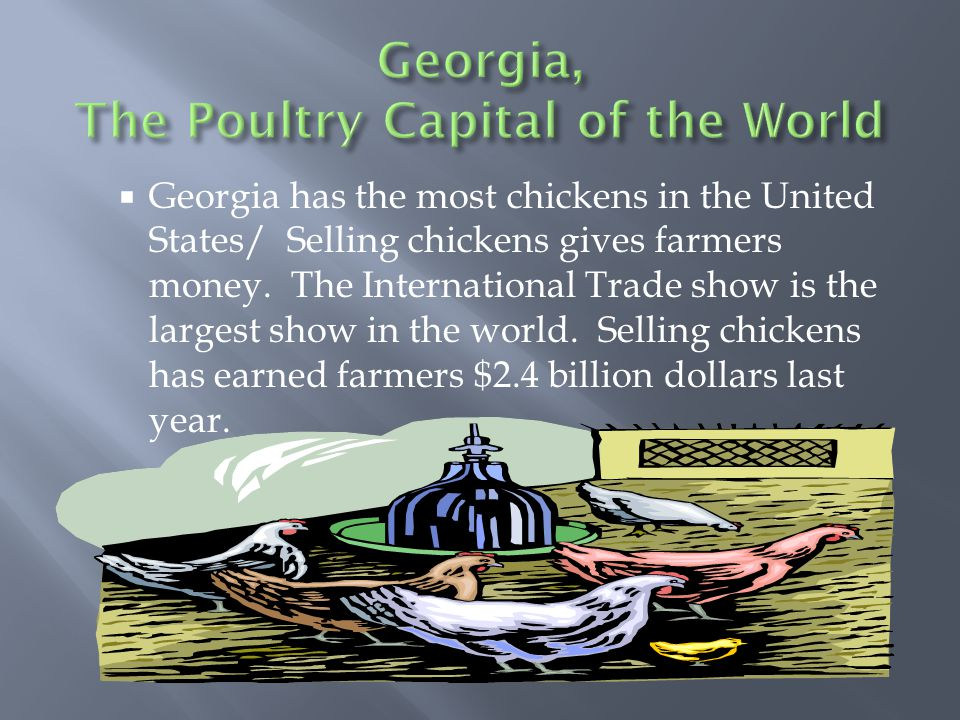  Georgia has the most chickens in the United States/ Selling chickens gives farmers money.