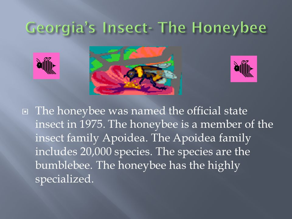  The honeybee was named the official state insect in 1975.