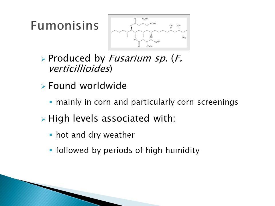  Produced by Fusarium sp.(F.